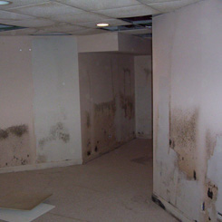 Damaged Walls Due to Rain Water Leak